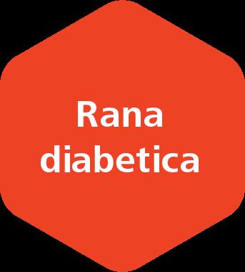Rana diabetica